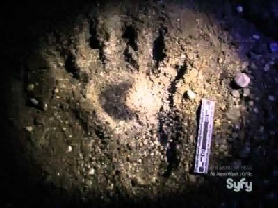 Clues And Evidence Unsolved Mysterys The Werewolf